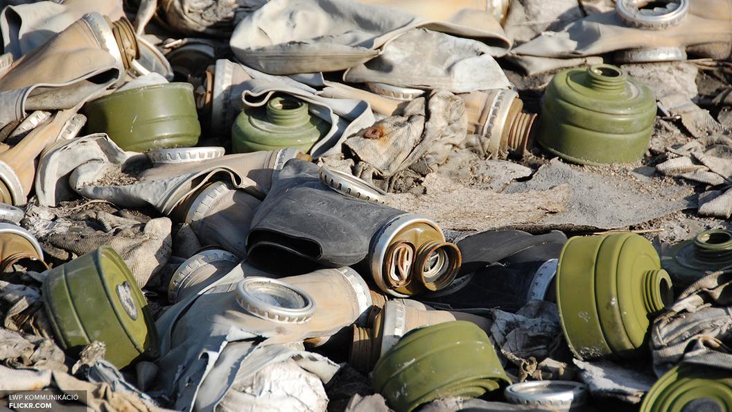 Лавров назвал доказательство помощи ОЗХО в свержении властей Сирии