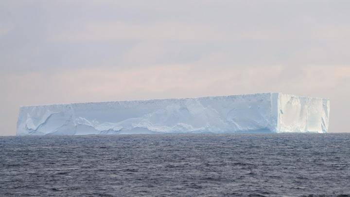 У Южного полюса объявлена угроза цунами: Русские волнуются за Беллинсгаузен