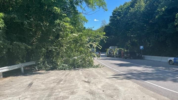 Пострадали двое детей: В Сочи грузовик влетел в припаркованную на обочине Ладу
