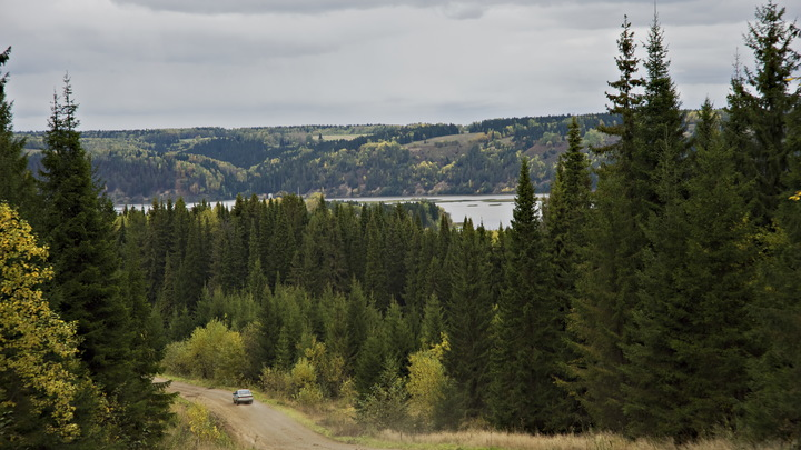 Роскомнадзор сообщил о 400 километрах дорог России, лишенных доступа к мобильной связи