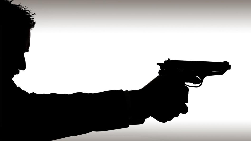 15:09Агент ФБР выстрелил вчеловека, сделав сальто натанцполе