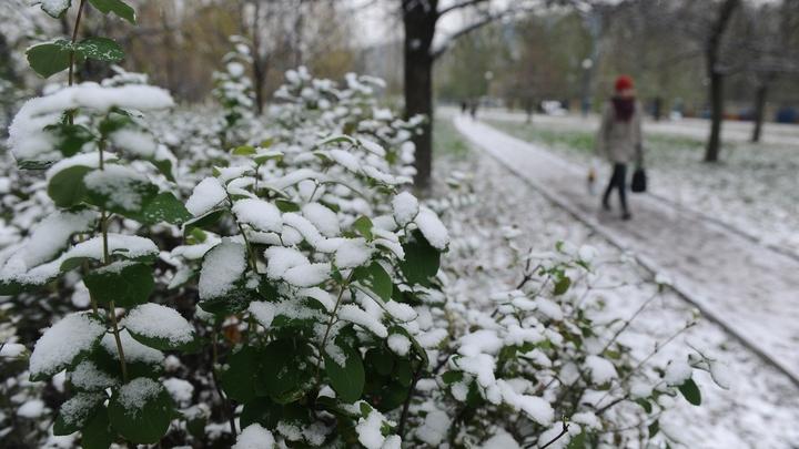 Снег в столице выпадет уже доконца сентября