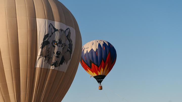 Пришлось прыгать: В Подмосковье произошла авария с воздушным шаром