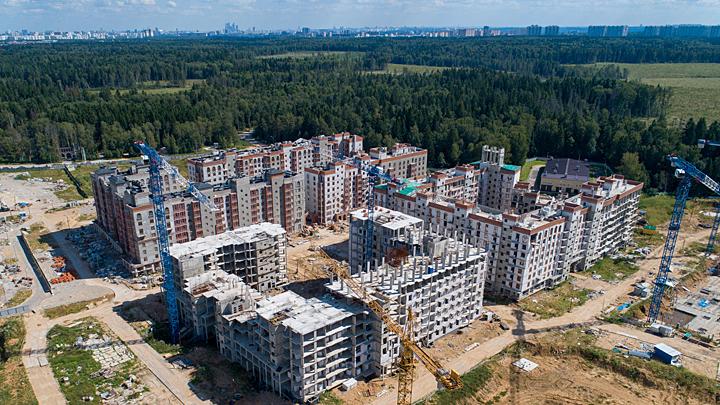Урбанистическая катастрофа: Кто уничтожаетлеса в Подмосковье?