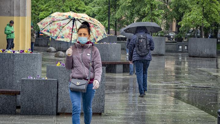Дожди с грозами и до +19 градусов ожидается в Новосибирске 24-25 июня