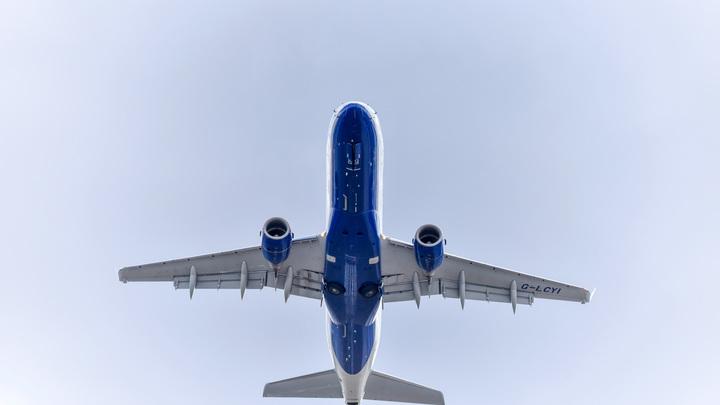 Пьяный пассажир и бомба в самолёте? Подробности задержания рейса Аэрофлота в США