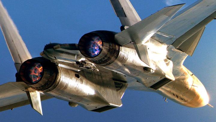 А птица ли? Предварительная версия крушения Су-30 в Сирии выглядит сомнительно