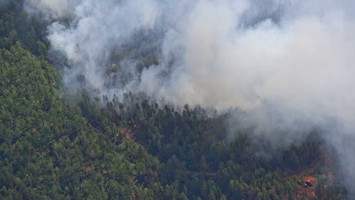 В Португалии заподозрили искусственное происхождение лесного пожара