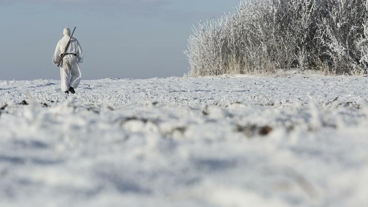 Отстреливали редких животных: Зоозащитник организовал VIP-охоту на Алтае