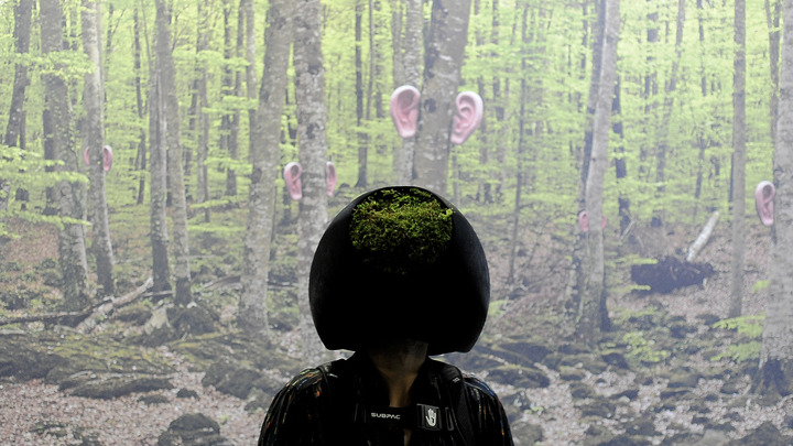 Настройся на волну: VR-шлем сможет излечивать фобии школьников перед ЕГЭ