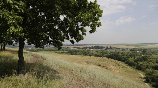 В Еврейской автономии найдено тело грибника, взятого в заложники для сбора конопли