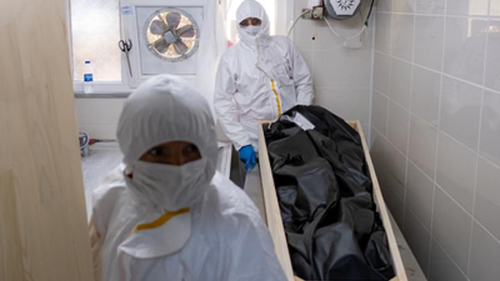 Почти 500 смертей за сутки: Коронавирус обновил летальный рекорд в России
