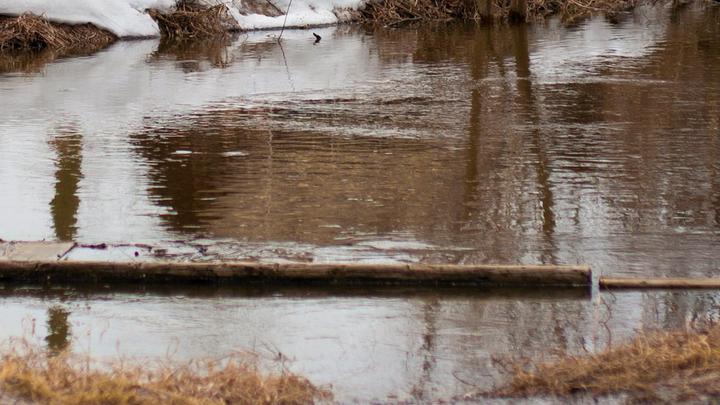 В Нижнем Новгороде затопило пешеходный мост через Старку