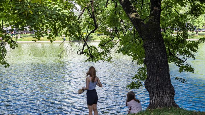 В 2022 году закончат благоустройство Малаховского озера в Люберцах