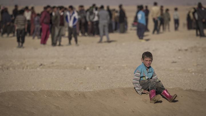Дети, старики, полицейские, инвалиды: В Ираке исследуют 200 массовых захоронений жертв ИГ