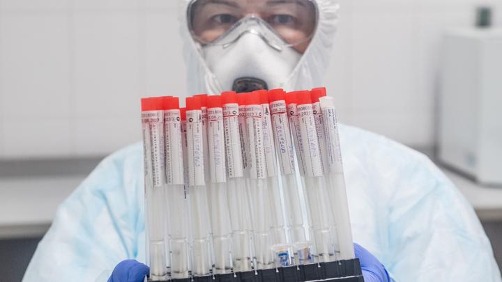 COVID на свалке: В Краснодаре нашли выброшенные пробирки с кровью и тесты на коронавирус