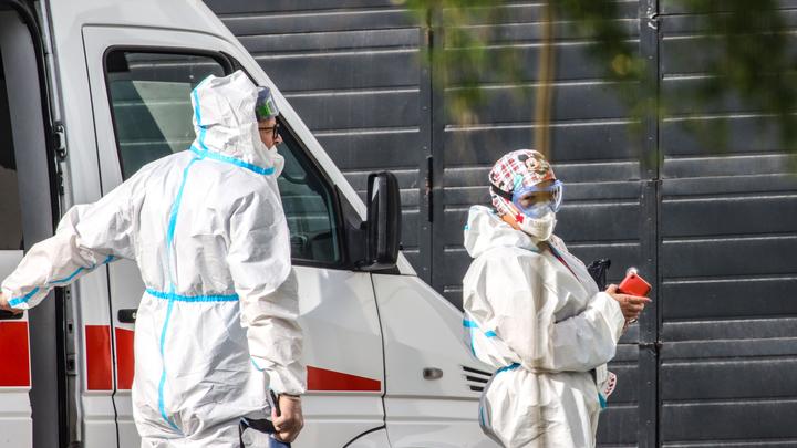 2308 новых случаев коронавируса за сутки 24 июня выявлено в Подмосковье