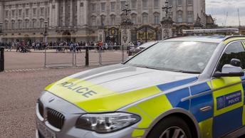 Полиция Лондона задержала подстрекателя, вербующего в ИГИЛ