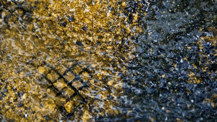 Выпавшее из Ан-12 золото оказалось совсем другим металлом