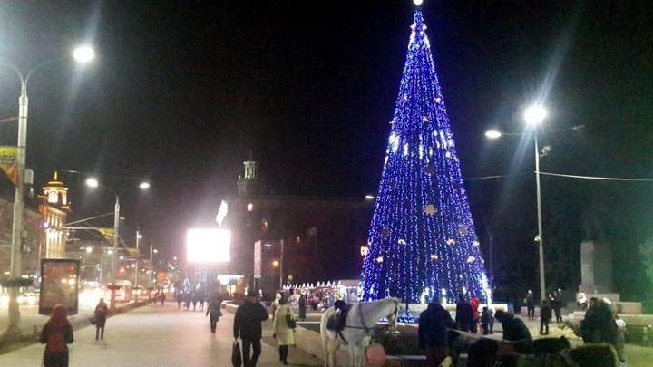 Главную Новогоднюю ёлку в Ростове-на-Дону будут зажигать в онлайн режиме