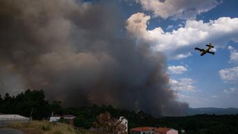 Версия поджогов не исключена: Жертвами мощных пожаров в Португалии и Испании стали 9 человек