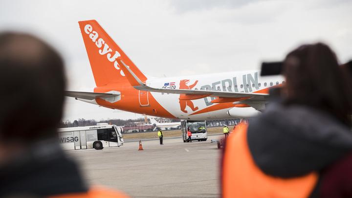 Пилот EasyJet «вылетел» с работы за видео с танцующей совой
