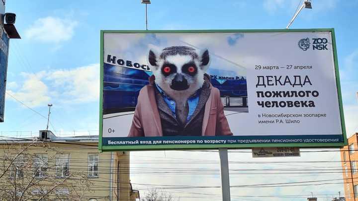 На рекламном баннере Новосибирского зоопарка пенсионера изобразили в виде лемура в пиджаке