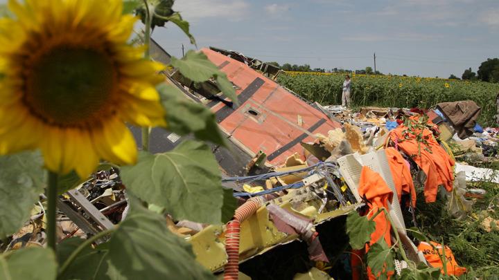 В Нидерландах выдали новые данные о двух пропавших пассажирах рейса MH17