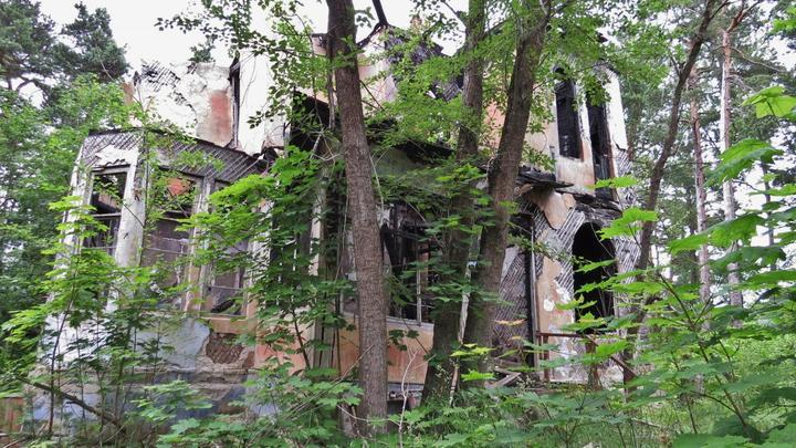 Заброшенный лагерь с дачей-памятником под Петербургом и старинный особняк «ушли» в частные руки