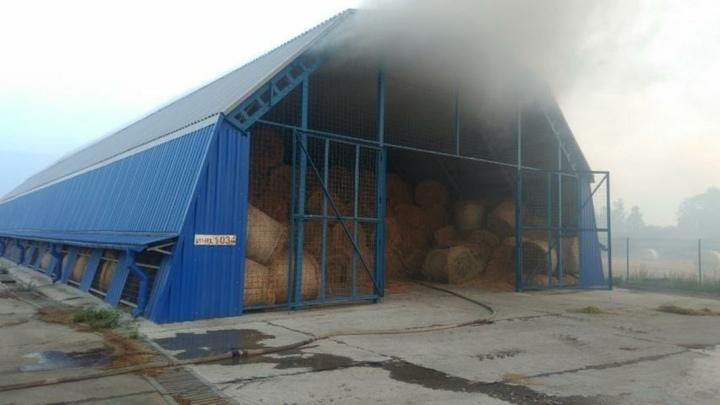 Почти 500 тонн сена спасли белорусские спасатели в Молодеченском районе