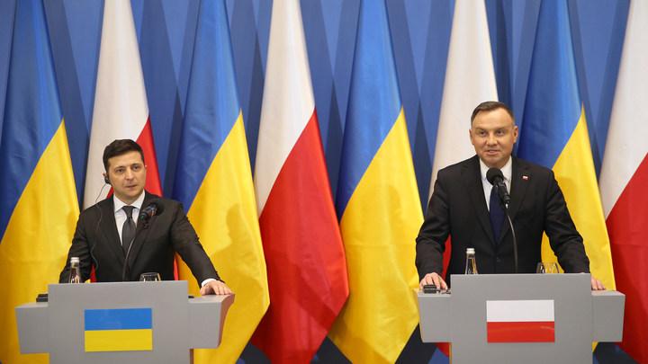 Обвинения Зеленского в адрес СССР предполагают возврат части Украины Польше - депутат ДНР