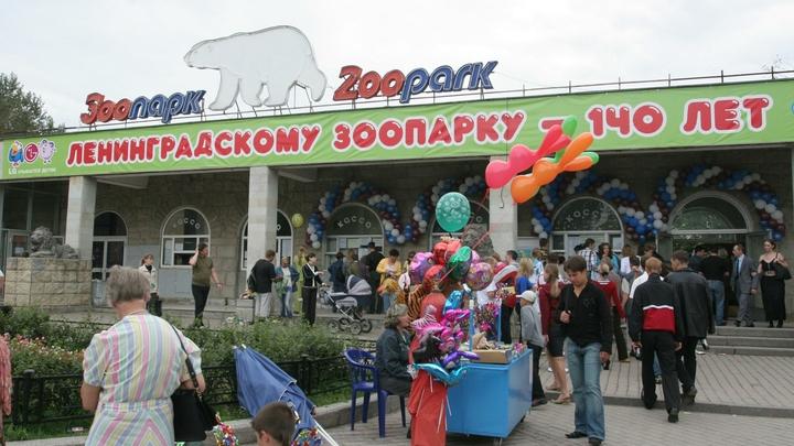 Ленинградский зоопарк лишил многодетных права бесплатного посещения по субботам