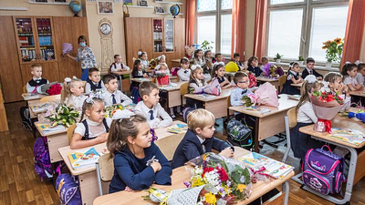 Новосибирцы начали получать выплаты по 10 тысяч рублей на школьников