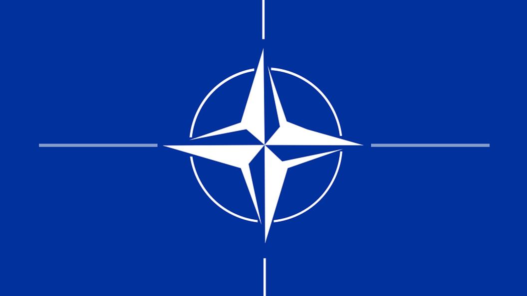 Трамп и глава НАТО обсудили финансовые проблемы и мирное решение в Донбассе