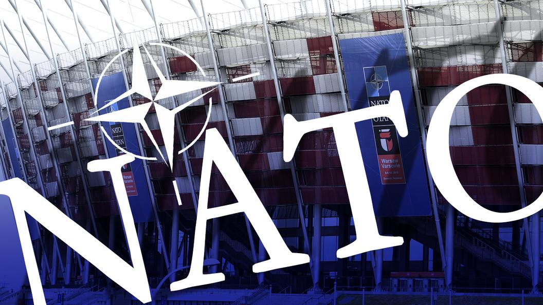 Польский политик: Варшава находится в оккупации НАТО