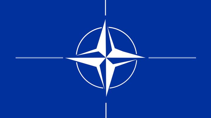 Социологи США: Большинство украинцев считают НАТО угрозой
