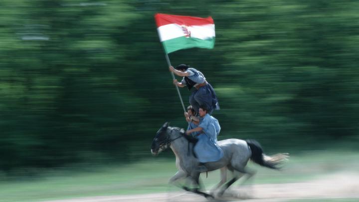 Украина пытается избежать демонтажа, расчленив венгерское Закарпатье - СМИ