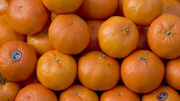 На мусорном полигоне в Петербурге уничтожили более 20 тонн мандаринов из США
