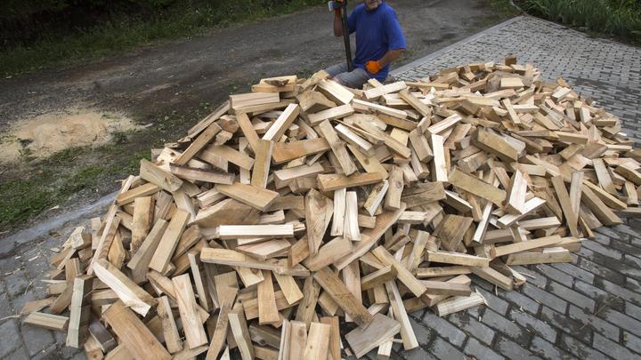 В России почти на треть выросли продажи дров