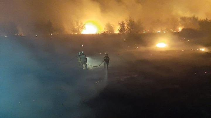 Угонщик, из-за которого в Ростовской области сгорели 400 га леса, уедет в колонию строгого режима