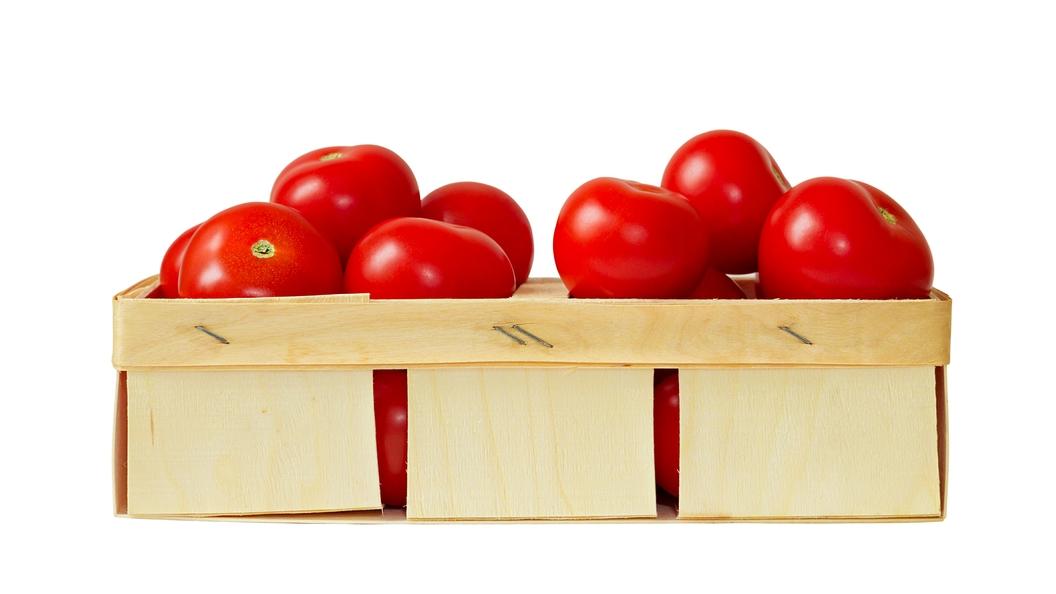 Россия запретила возить азиатские и африканские томаты через Белоруссию