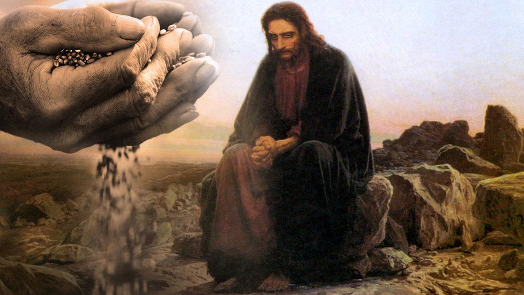 Евангелие дня: Притча о сеятеле