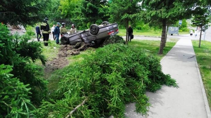 В Кемерове автомобиль вылетел с дороги, сломал елку и перевернулся