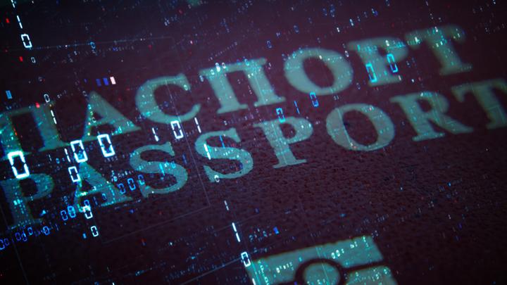 Электронный паспорт – очередное бархатное ограбление России