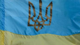 В массовых беспорядках возле суда в Киеве пострадали несколько десятков человек