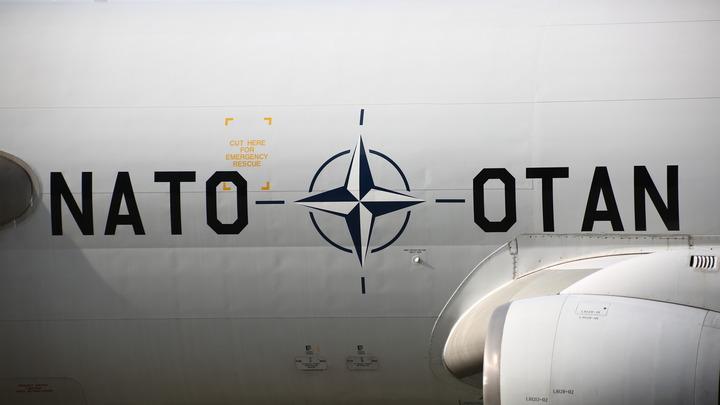 Владимир Соловьев поспорил на бутылку, что Украина не вступит в НАТО