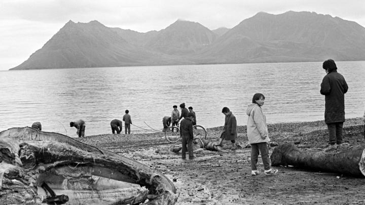 Чукотка как оплот традиционных ценностей: Американский рыбак уподобился Федору Конюхову