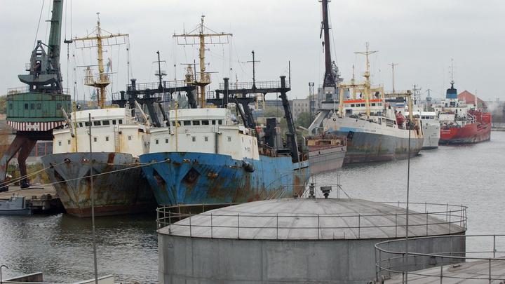 С просроченными польскими химикатами в порту Калининграда разберется Интерпол