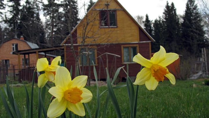 На смену дачам в России придут садовые дома