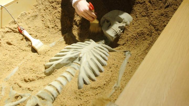 Под Псковом нашли останки убитого ребёнка со следами от пуль